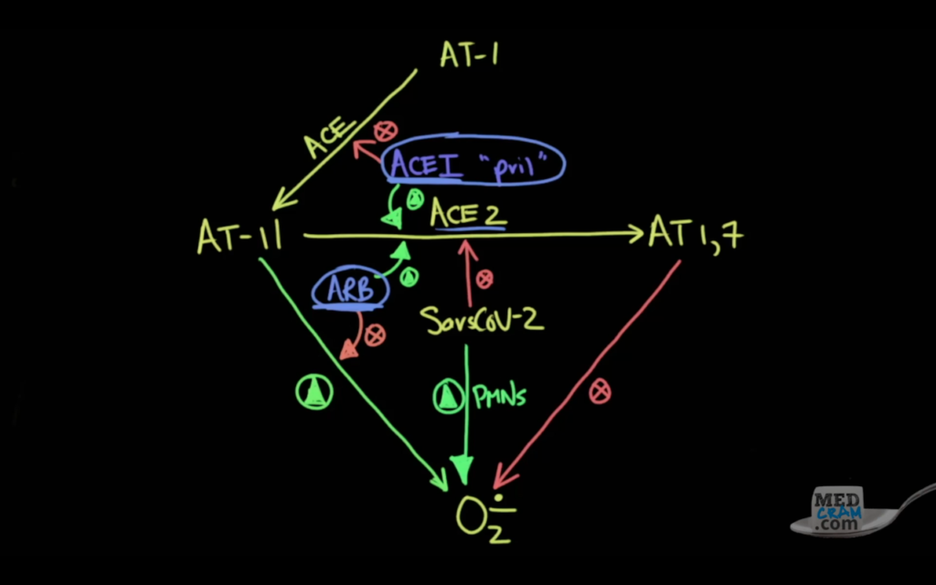 A chart of oxidative stress and COVID-19