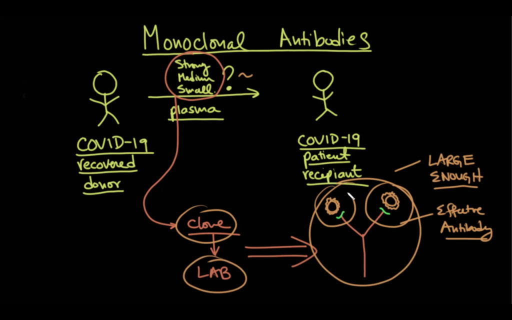 An illustration of how monoclonal antibodies function in COVID-19